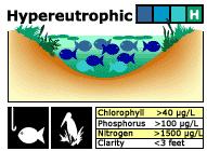 hypereutrophic