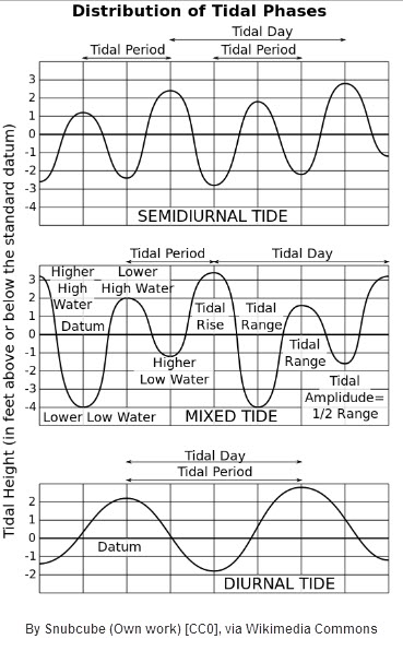 types of tides; source: wikimedia