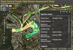 Tidal Stream Assessments