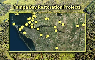 Tampa Bay Restoration