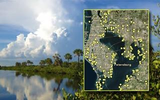 Tampa Bay Restoration