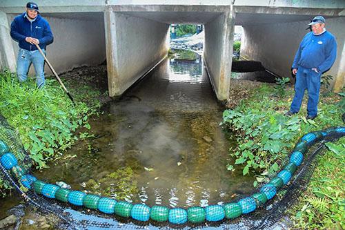 photo of WaterGoat