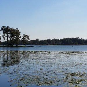 Lake Jessamine