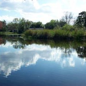 Featured Waterbody Photo