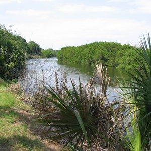 Saint Joes Creek