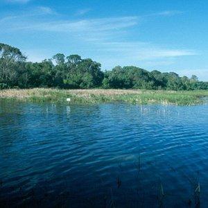 Cypress Creek Watershed
