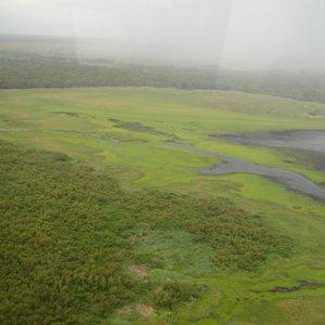 Myakka River