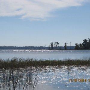 Lake Butler