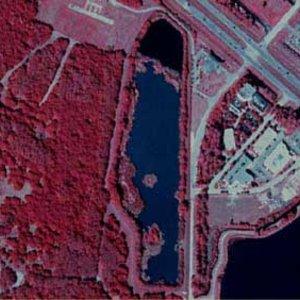 Blue Heron Lake