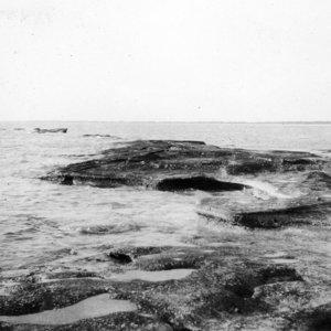 Little Sarasota Bay Watershed